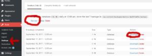 Screenshot of the BackupWordPress plugin, where we're going to export and download the WordPress Database.